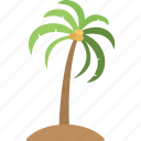 palm tree, island tree, coconut tree, tree, tropical tree