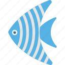 angelfish, aquatic mammal, fish, pet fish, spadefish icon