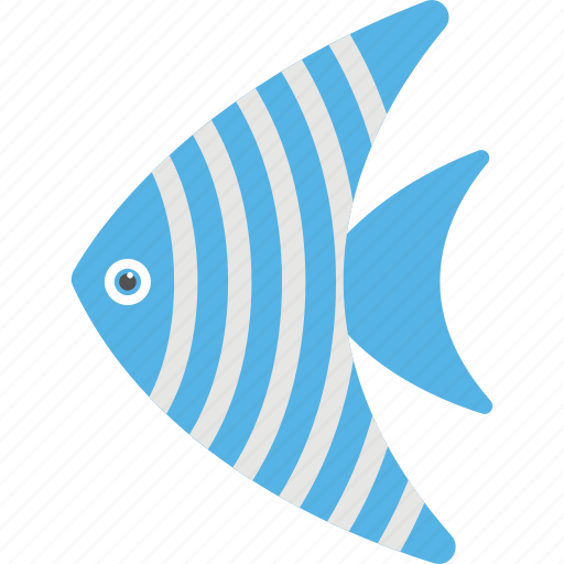 angelfish, aquatic mammal, fish, pet fish, spadefish icon