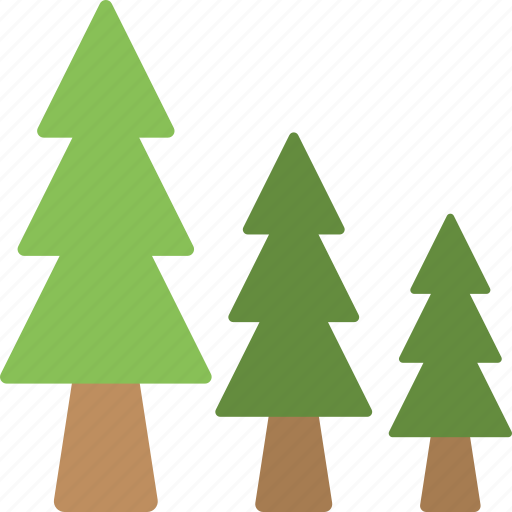 evergreen trees, fir trees, forest, trees, winter forest icon