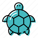 marine, ocean, sea, sea turtle icon