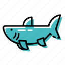 fish, marine, ocean, sea, shark icon