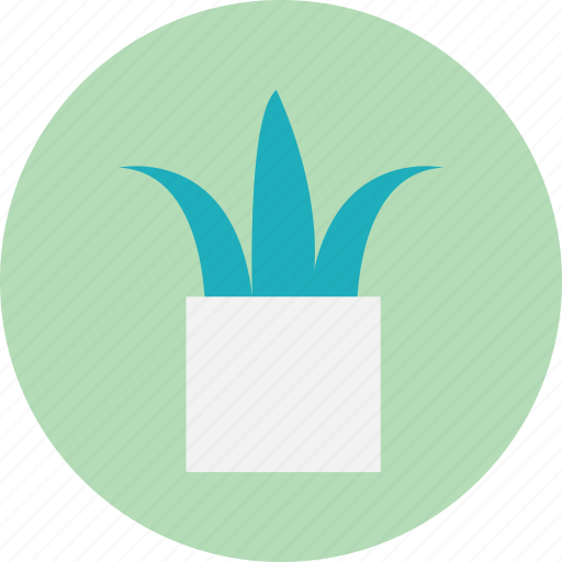 flowerpot, interior, plants, pot icon