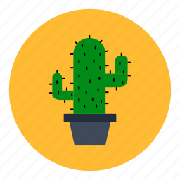 cactus, decoration, flower, flowerpot, office, plant, room icon