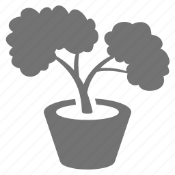bonsai, decoration, nature, pot, relaxing, tree icon