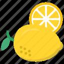food, fruit, juicy fruit, lemon, organic food icon