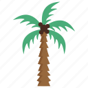 arab tree, date palm, date tree, edible palm, palm tree icon