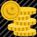 paisa, pakistani coins, pakistani currency, pakistani money, rupee icon