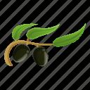 branch, floral, frame, natural, olive, tree