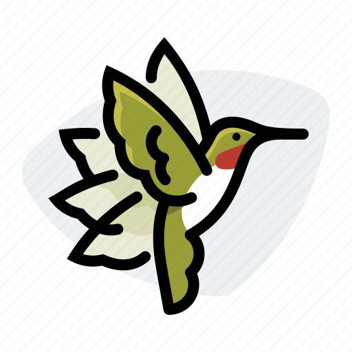 bird, flight, hummig bird, hummingbird, wings icon