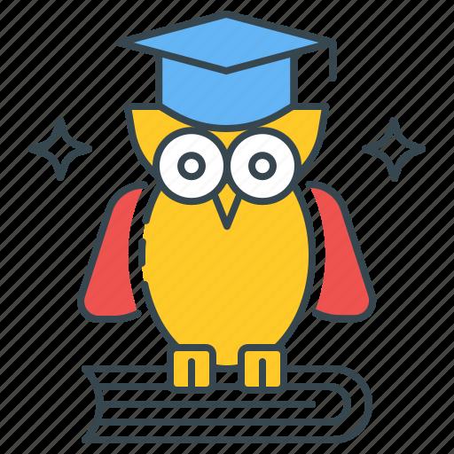 Wisdom, owl, school, knowledge, learning, education, bird icon
