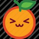 emoticon, cute, funny, orange, smile, emoji icon