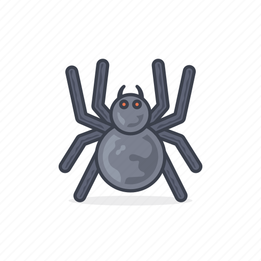 animal, insect, nature, spider, spiderweb, spring icon