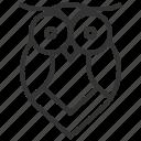 owl, animal, bird, ui, ux