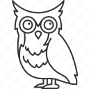 owl, bird, wildlife, animal, nature