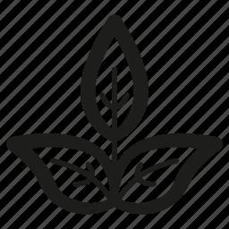 leaf, line, organic, plant icon