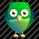 animal, baby, green, kid, nature, owl