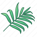 bamboo, green, icons, leaf, leaves, nature, palm, tropic, tropical icon