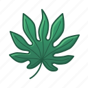 green, icons, leaf, leaves, palm, tropic, tropical icon