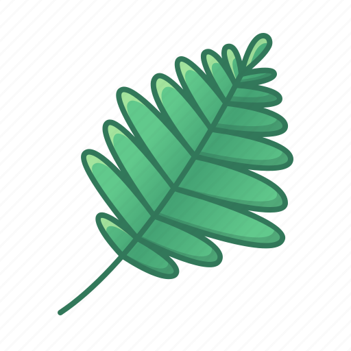 green, icons, leaf, leaves, nature, palm, tropic, tropical icon