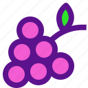 drink, france, fruit, grapes, wine icon