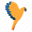 animal, aviary, beak, nature, parrot, pionus icon