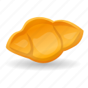 conchiglie, cuisine, food, macaroni, pasta, shell