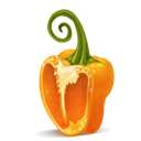 half, orange, pepper icon