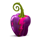 pepper, purple icon