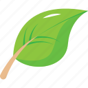 eco, ecology, forest, green, natural, nature, palme, pine, tree icon