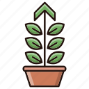 growth, investments, performance, plant icon