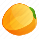 eco, food, fresh, fruit, persimmon