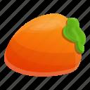 eco, food, fruit, persimmon
