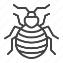 bedbug, bug, control, insect, pest icon
