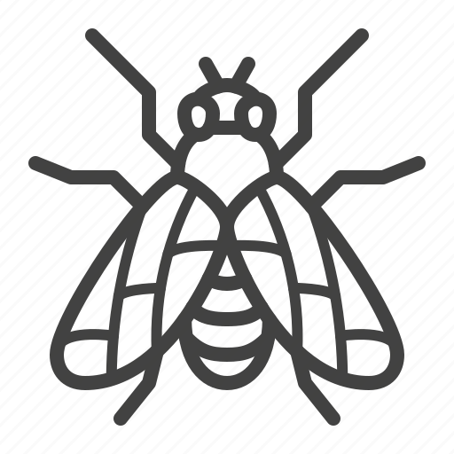 control, fly, insect, pest icon