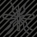 control, insect, malaria, mosquito, pest icon