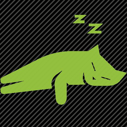 cat, cute, kitten, kitty, pet, sleeping icon