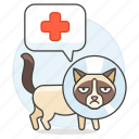animal, buster, care, cat, collar, cone, e, of, pet, recovery, shame, surgery, vet, visit icon