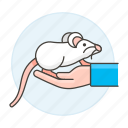 1, albino, animal, domestic, hand, mouse, pet, rodent, white icon