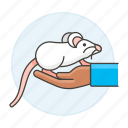 3, albino, animal, domestic, hand, mouse, pet, rodent, white icon