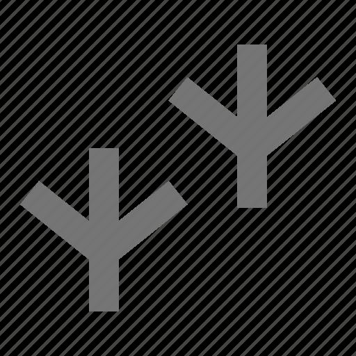 bird, bird feet, feet icon