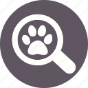 animal, animals, breed, domestic, mammal, pet