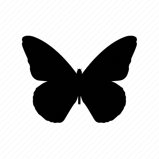 animal, animals, breed, butterfly, domestic, mammal, pet icon