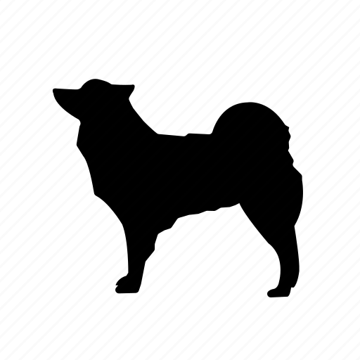 animal, animals, breed, domestic, mammal, pet, wolf icon