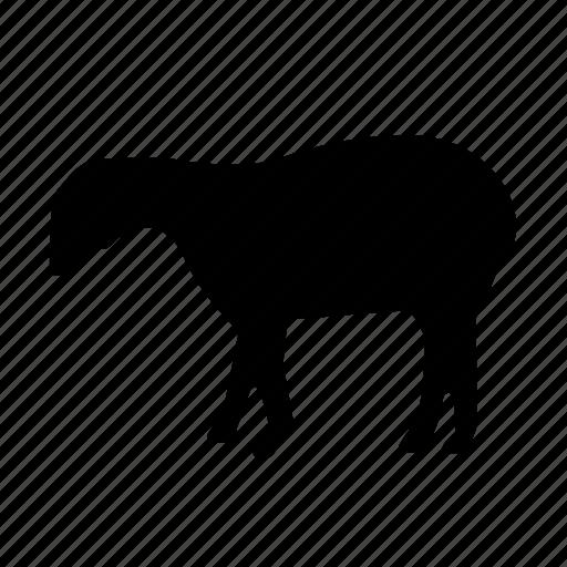 animal, animals, breed, domestic, goat, mammal, pet icon