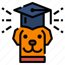 certification, certified, dog, petshop, training icon