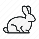 animal, hare, house, pet, rabbit, sitting, wild icon