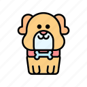 dog, pets, puppy icon