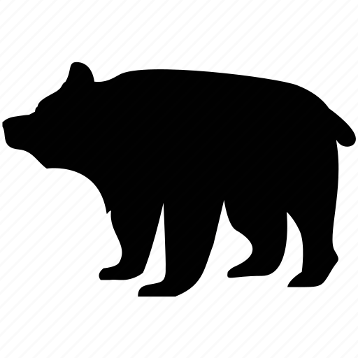 animal, bear, nature, zoo icon