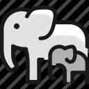 elephant, mother
